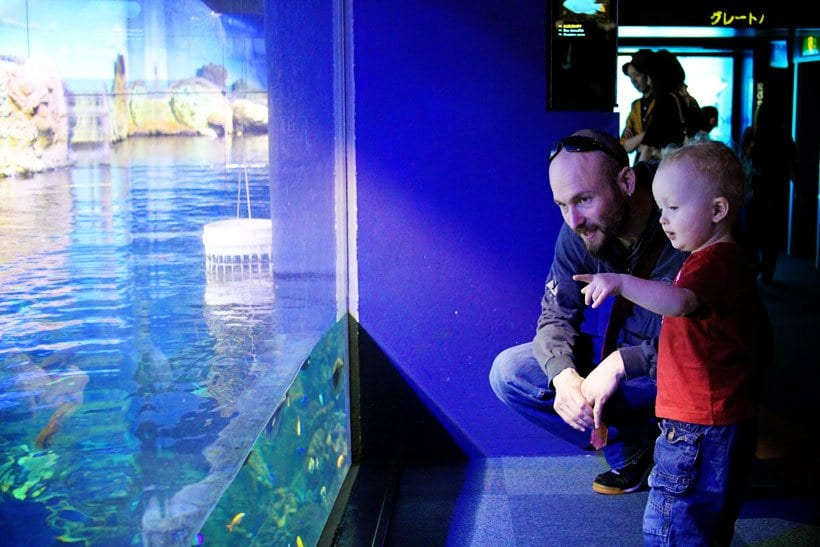 Osaka-Aquarium