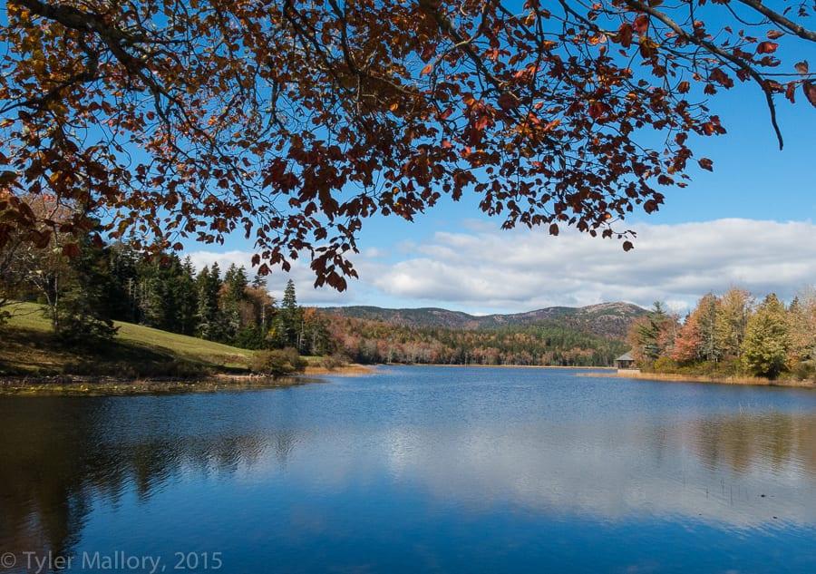 A leisurely stroll along Long Lake