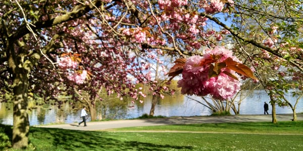 Seattle Spring Castle Heart Angela