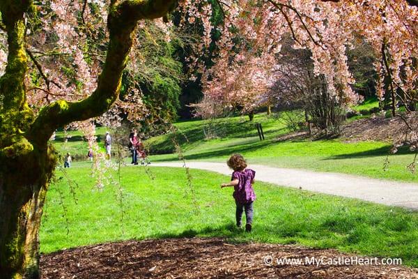 Spring Blooms Trees MyCastleHeart Castle Heart Angela Hylland