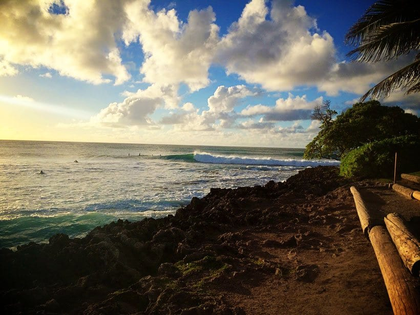 Turtle-Bay-Resort