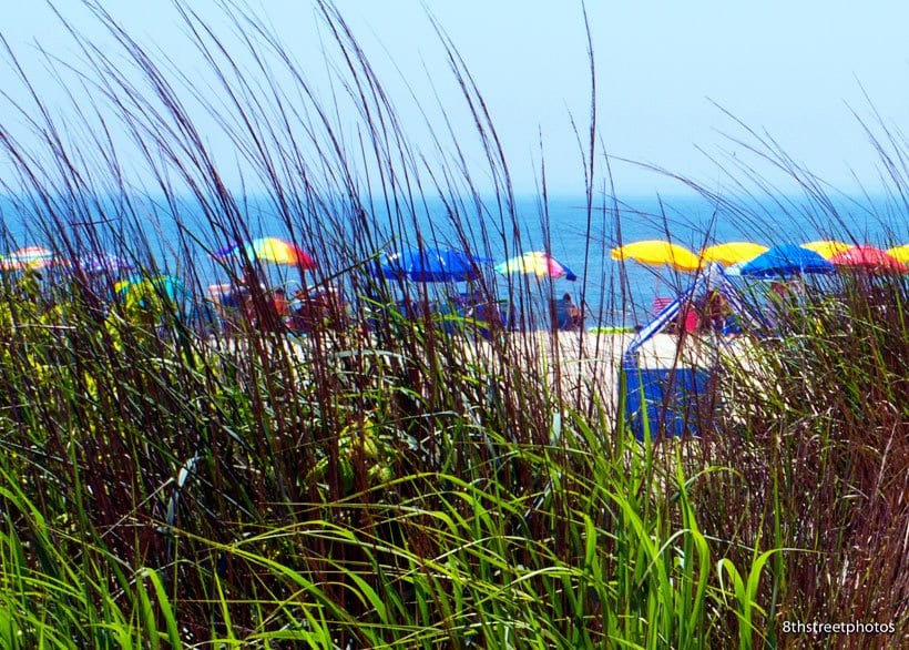 Things to do in Cape May