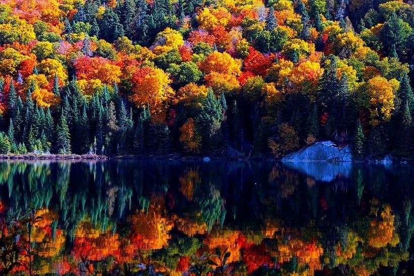 Autumn on the East Coast