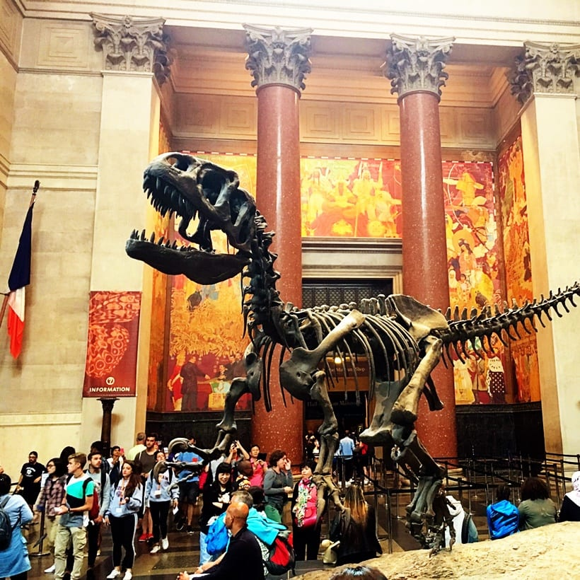 American Museum of Natural History NYC with Kids