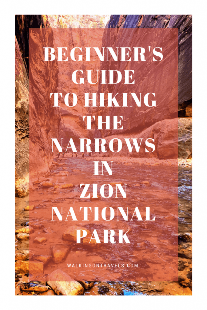 Beginner's Guide to Hiking the Zion Narrows when you are in Zion National Park #nationalparks #zion #hiking