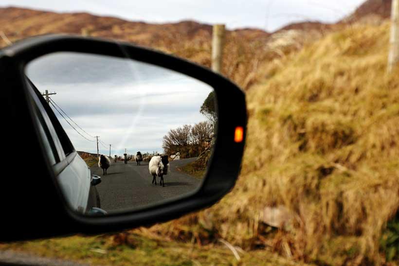 Rent A Car In Ireland