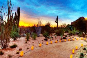Tempe Arizona Events
