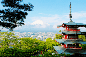 Books on Japanese Culture