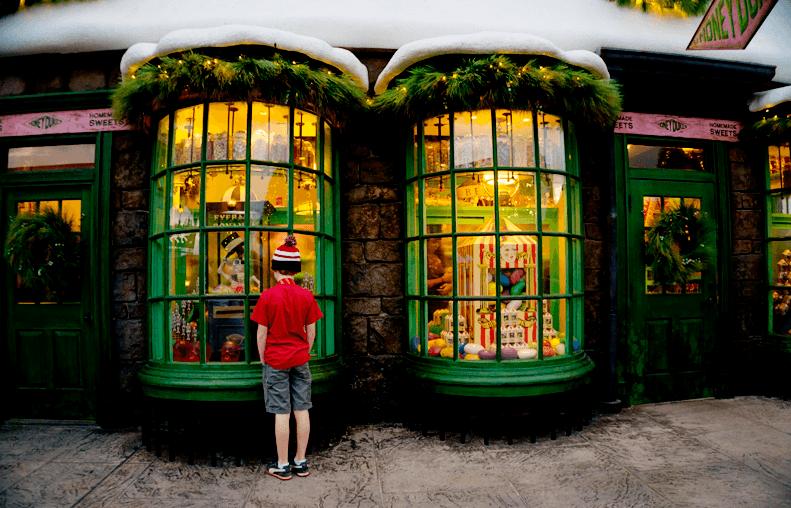 Wizarding World of Harry Potter