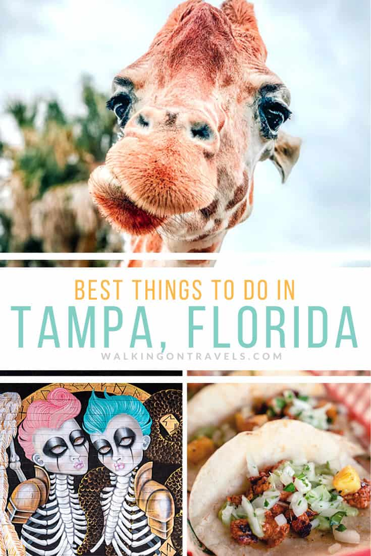 Things to do in Tampa FL