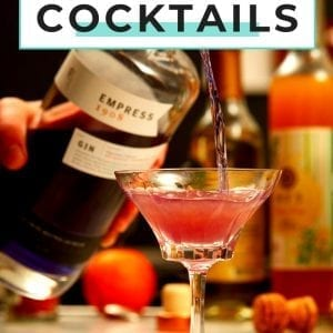 Empress Gin cocktail recipes