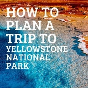 plan a trip to Yellowstone National Park